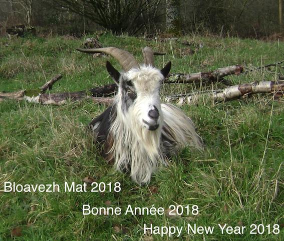 2018... Bloavezh-mat-2018b